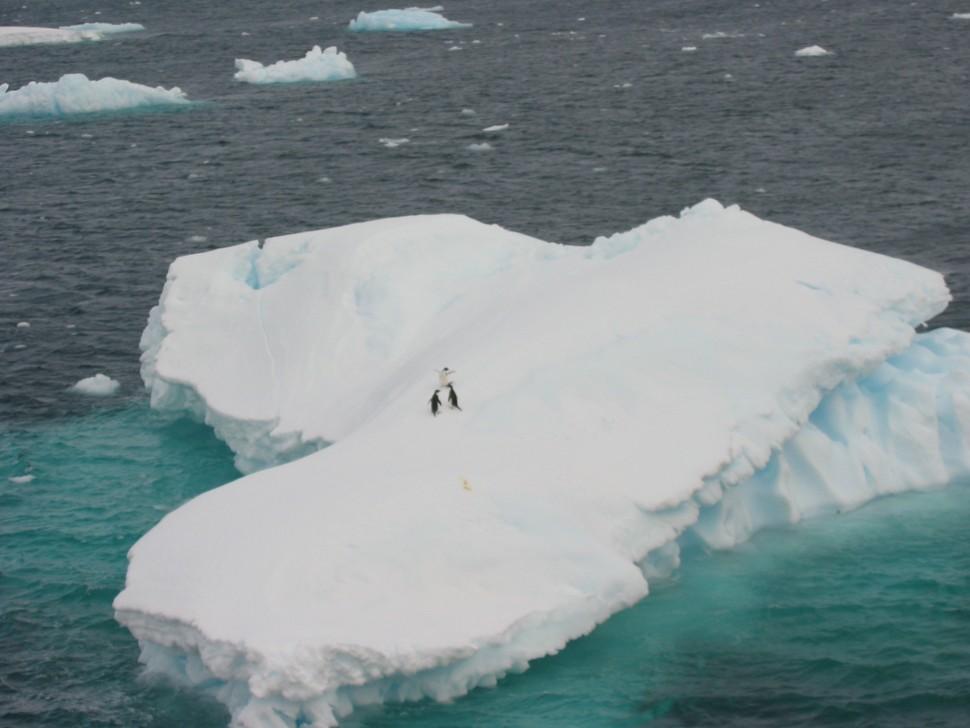 Antarctic peninsula-MRaymond