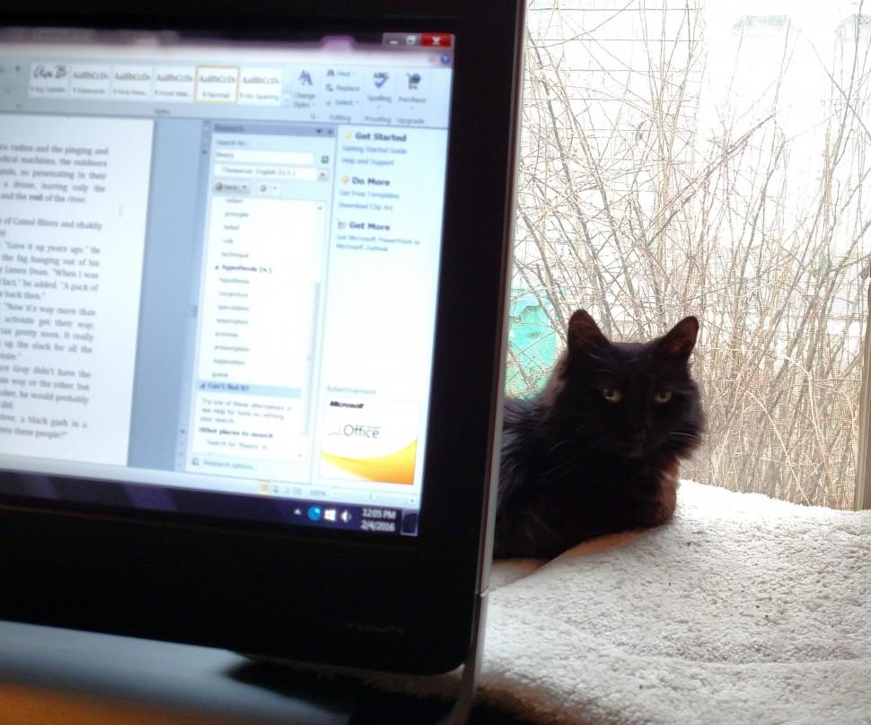 Tinkerbelle, Prime Editor